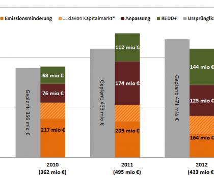 Deutsche Fast-Start-Zusage 2010-2012 nach Bereichen