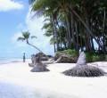 Küstenerosion durch Meeresspiegelanstieg, Carteret Islands, Papua Neuguinea Photo: Tulele Peisa