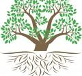 indc-light-tree-words