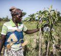 Im Norden Ghanas wechseln sich Dürren und Überschwemmungen nach schweren Wolkenrüchen ab; nach solchen Katastrophen stehen Kleinbäuerinnen und -bauern oft vor dem Nichts.